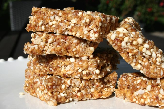 Awesome, No-Bake, Medjool Date Bars