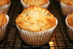 BOD Muffins